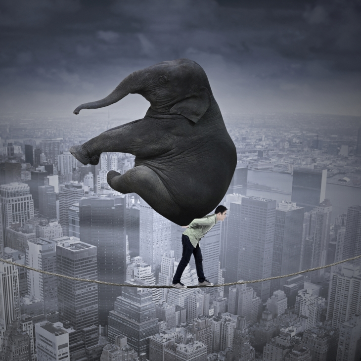 carry_elephant_on_rope_shutterstock_211450909